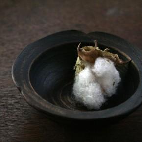 輪花豆小鉢